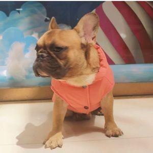 🐶2/$25 Dog jacket vest pink size Medium